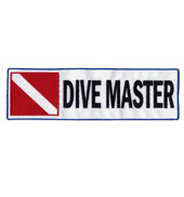 DIVE master Backpatch